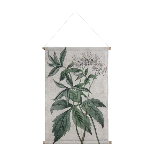 HK_WA5_BOTANICAL L_Printed wall chart on cotton with wooden frame and rope_85x59,5×2,5cm_€ 19.95